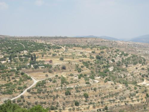 Пригороды Вифлеема